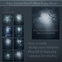 Foggy Woods Tutorial